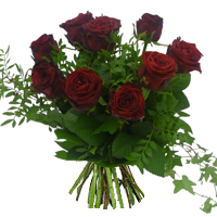 Vackra Röda rosor och grönt