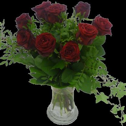 Eleganta 10 röda rosor och grönt