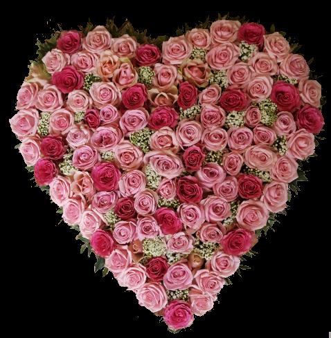 Begravningshjärta i rosa