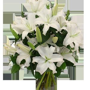 Vackra vita liljor