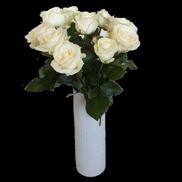 vita-avalanche-roses