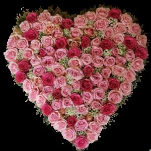 Vacker rosa begravningshjärta