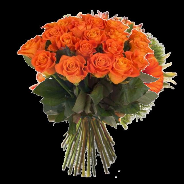 vackra-orange-rosor